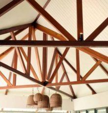 PVC ceiling 1